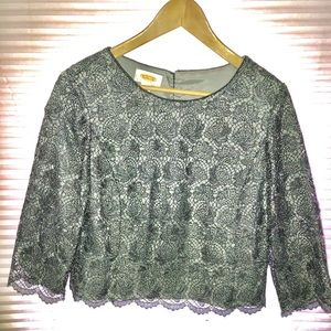 Petite Lacy Blouse for Formal Occasion